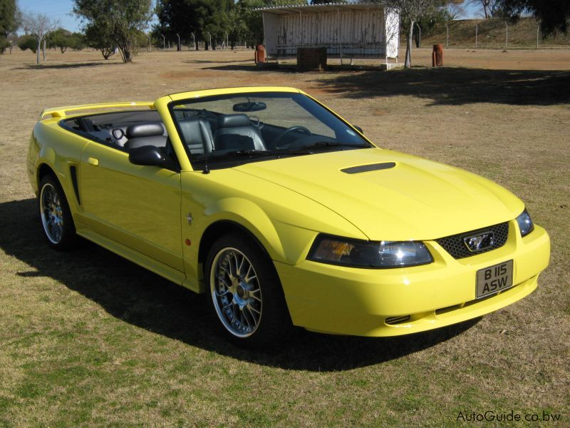 used cars in ford for sale used mustang 2002 ford mustang. Cars Review. Best American Auto & Cars Review