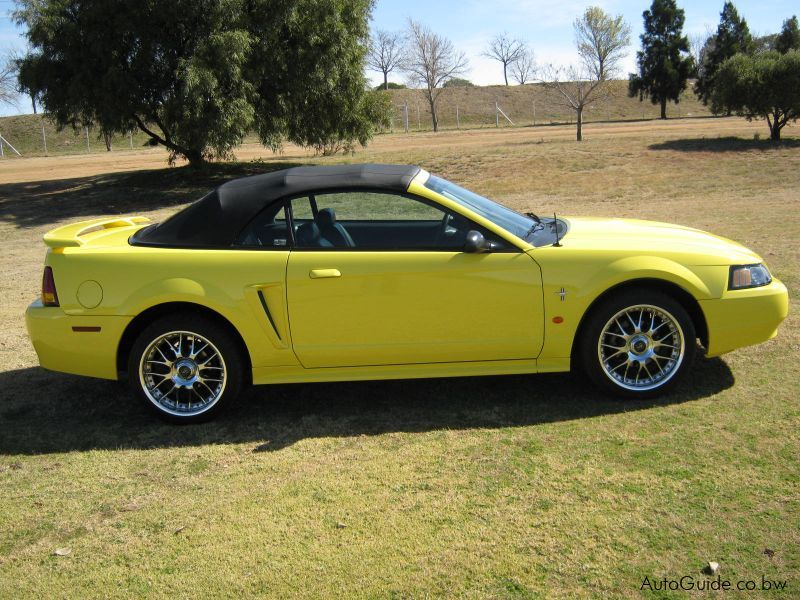 used ford mustang 2002 mustang for sale ford mustang. Cars Review. Best American Auto & Cars Review